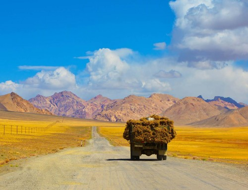A Road Trip Along the Silk Route in China